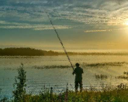 действующий закон о любительской рыбалке