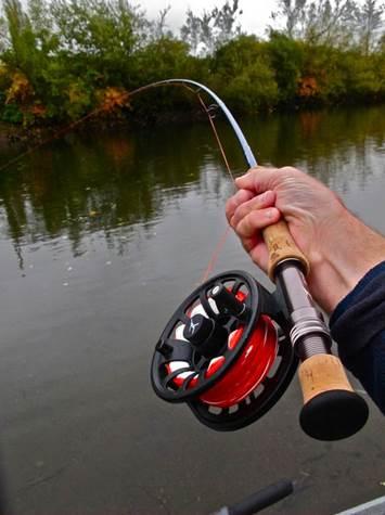 Катушки для рыбалки нахлыстом